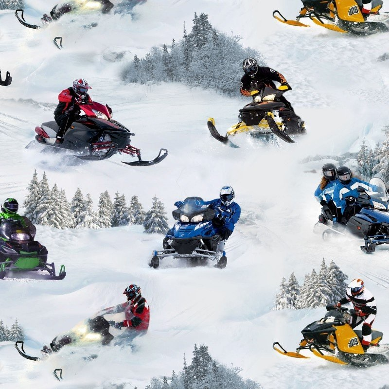 Snowmobiles fabric by Elizabeth Studio from In Motion